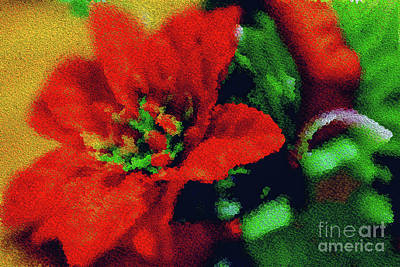 Painted Poinsettia Art Print by Sandy Moulder