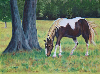 Painting - Painted Pony by Jill Ciccone Pike
