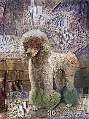 Photograph - Painted Poodle by Nina Silver