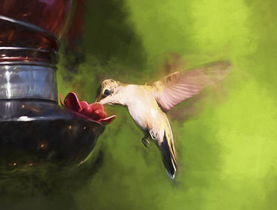 Archilochus Colubris Digital Art - Painted Ruby Throated Hummingbird by Alicia Collins