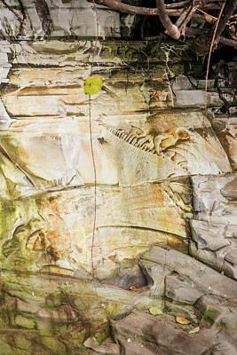 Photograph - Painted Sandstone by Bob VonDrachek