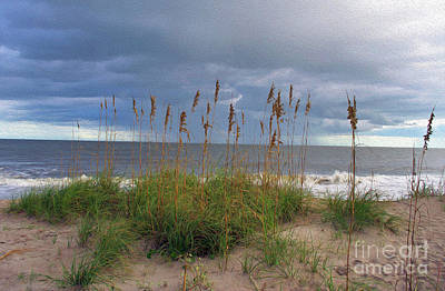 Photograph - Painted Sea Oats In The Storm by Skip Willits