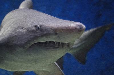 Shark Painting - Painted Shark by Jon Bullman