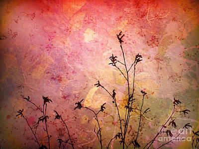Photograph - Painted Skies 2 by Tara Turner