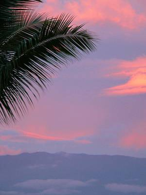 Art Print featuring the photograph Painted Sky by Debbie Karnes