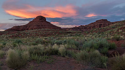 Photograph - Painted Sky by Loree Johnson