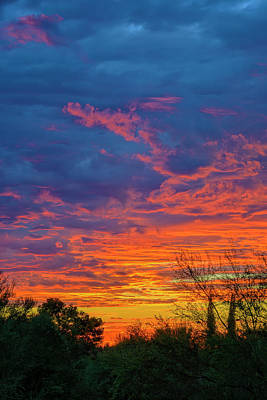 Photograph - Painted Sky V50 by Mark Myhaver