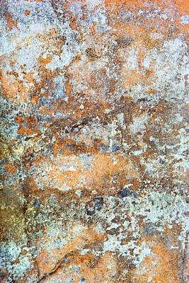 Photograph - Painted Stone by David Hare