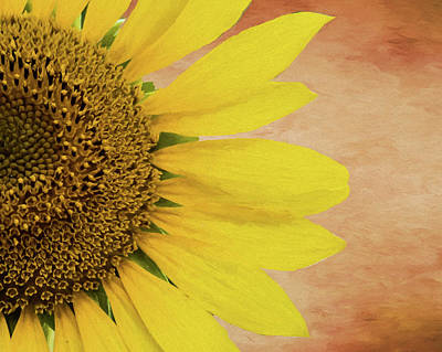 Photograph - Painted Sunflower by Cathy Kovarik