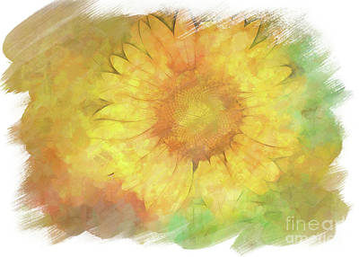 Digital Art - Painted Sunflower by Eleanor Abramson