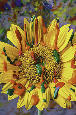 Mess Photograph - Painted Sunflower by Garry Gay