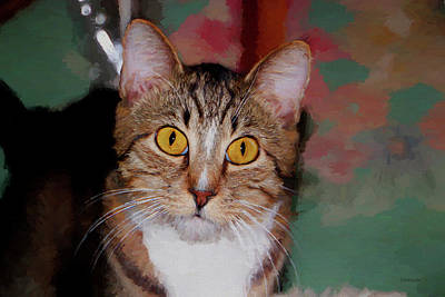 Homeless Pets Painting - Painted Tabby by Ericamaxine Price