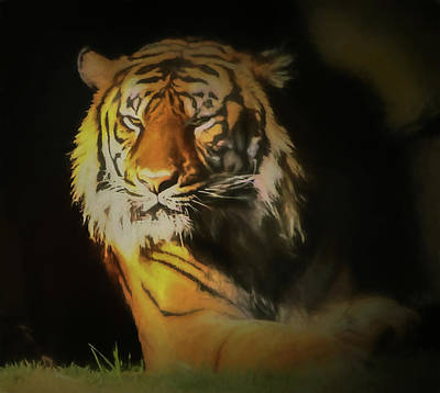 Digital Art - Painted Tiger by Kandy Hurley