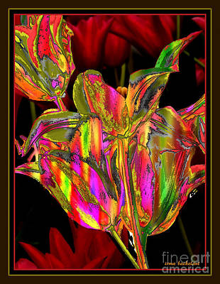 Photograph - Painted Tulips by Irma BACKELANT GALLERIES
