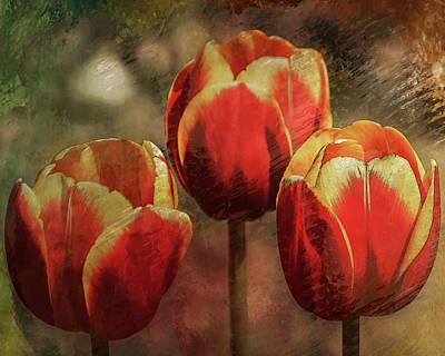 Digital Art - Painted Tulips by Richard Ricci