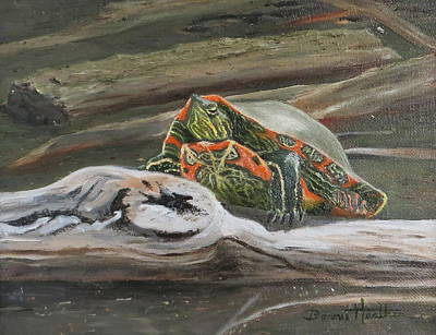 Painted Turtle Art Print by Bonnie Heather