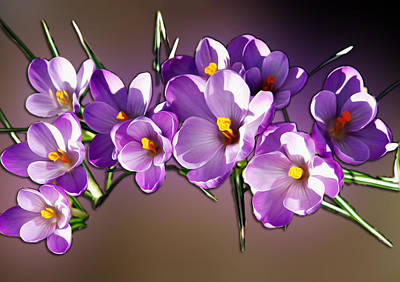 Painted Violets Art Print by John Haldane