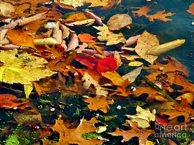 Painted Water          Autumn            Indiana Print by Rory Cubel