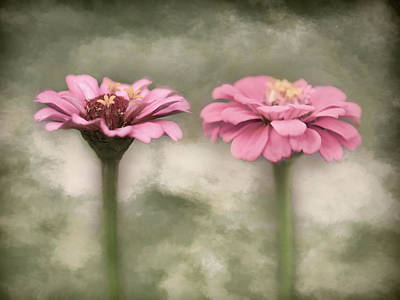 Photograph - Painted Zinnias by Lori Deiter