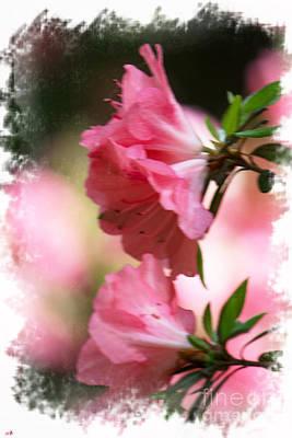 Photograph - Painterly Azaleas by Sandra Clark