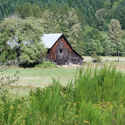 Photograph - Painterly Barn Near Elbe by Connie Fox