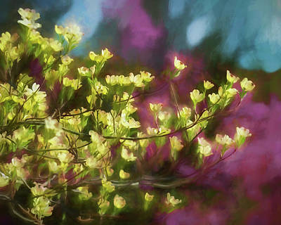 Impressionism Photograph - Painterly Dogwood by James Barber