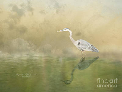Blue Herron Photograph - Painterly  by Rrea Brown