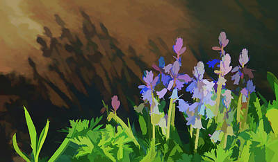 Photograph - Painterly Shadows by Aimee L Maher Photography and Art Visit ALMGallerydotcom