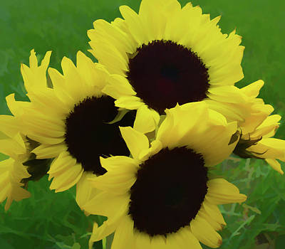 Photograph - Painterly Sunflower Bouquet by Aimee L Maher ALM GALLERY