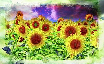 Photograph - Painterly Sunflowers by Virginia Folkman
