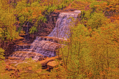 Photograph - Painting Albion Falls by Daniel Thompson