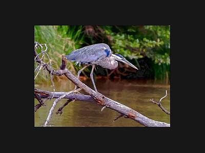 Bob Wade Painting - Painting Blue Heron Oak Creek by Dr Bob Johnston