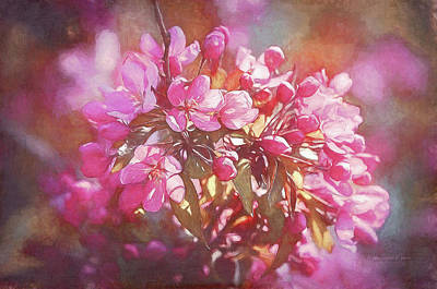 Photograph - Painting Cherry Blossoms by Maria Angelica Maira