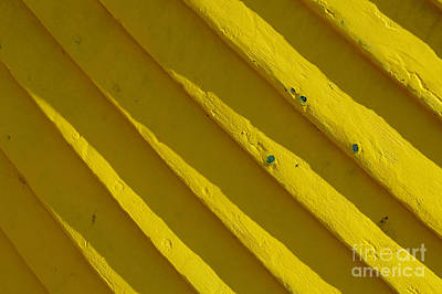 Photograph - Painting It Yellow by Wendy Wilton