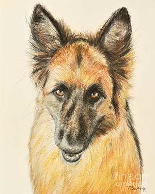 Painting - Painting Of A German Shepherd by Kate Sumners