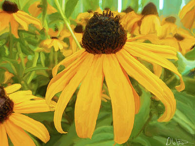 Painting - Painting Of Brown Eyed Susans by Garvin Hunter