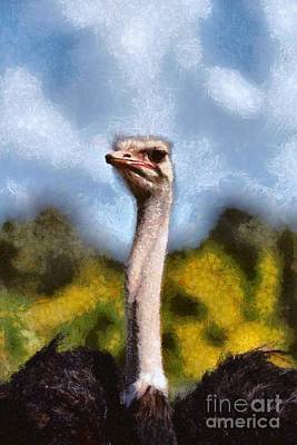 Painting - Painting Of Ostrich by George Atsametakis