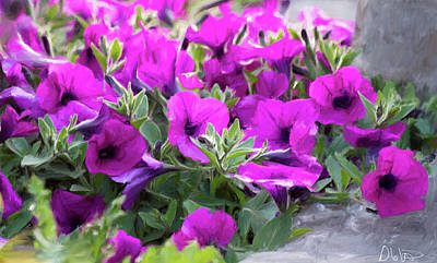 Photograph - Painting Of Petunias by Garvin Hunter