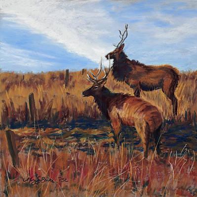 Pair O' Bulls Art Print by Mary Benke