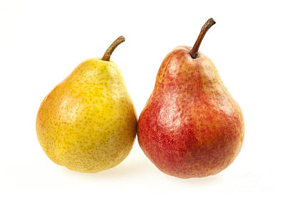 Photograph - Pair Of Pears by Elena Elisseeva