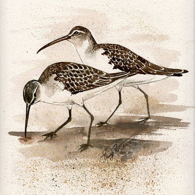 Painting - Pair Of Sandpipers by Nancy Patterson