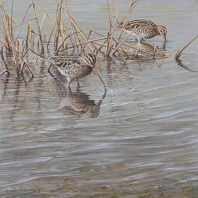 Painting - Pair Of Snipe by Alan M Hunt