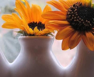 Photograph - Pair Of Sunflowers by Karen Molenaar Terrell
