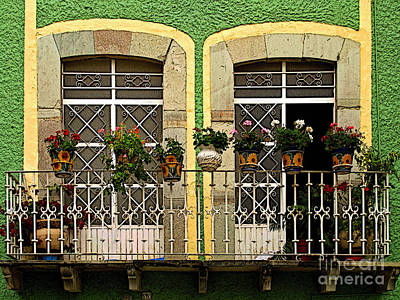 Pair Of Windows In Green Art Print by Mexicolors Art Photography