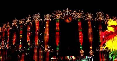 Photograph - Pakistan World Performing Festival  by Fareeha Khawaja