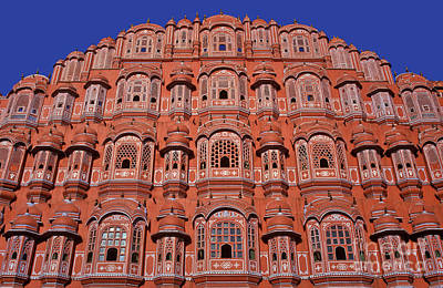 Animal Watercolors Juan Bosco - Palace of Winds - India by Henk Meijer Photography