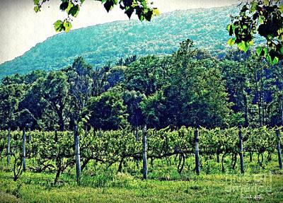 Winery Digital Art - Palaia Vineyard by Sarah Loft
