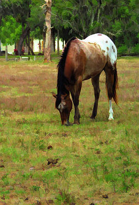 Mixed Media - Palamino Horse Grazing by Rosalie Scanlon