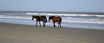 Photograph - Palamino Ponies On The Beach by Jennifer Lycke