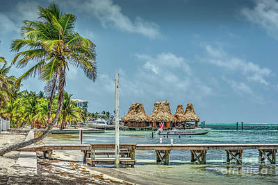 Photograph - Palapa's And Dock by David Zanzinger